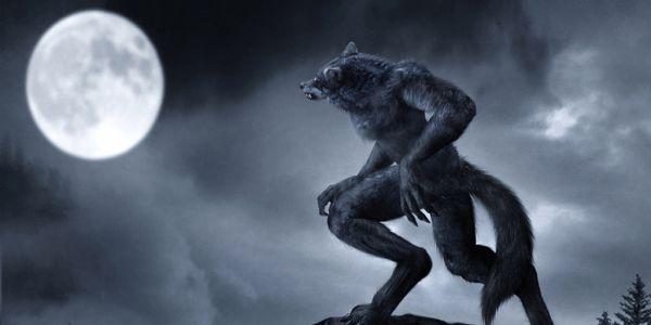 Vukodlak i pun Mesec