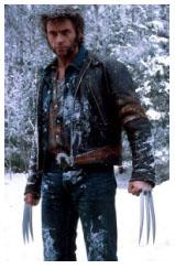 Wolverine Wlv4