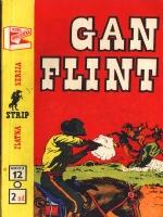 Gan Flint